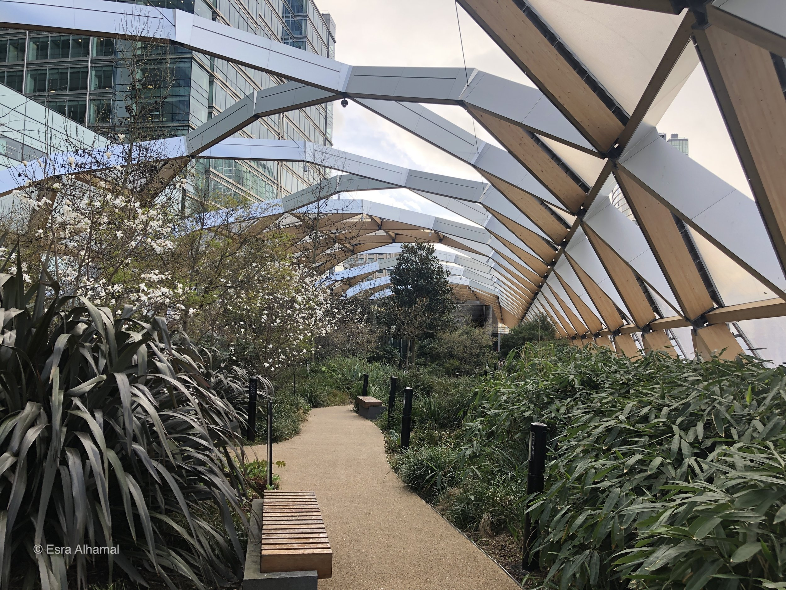roof garden in the Cross rail Place