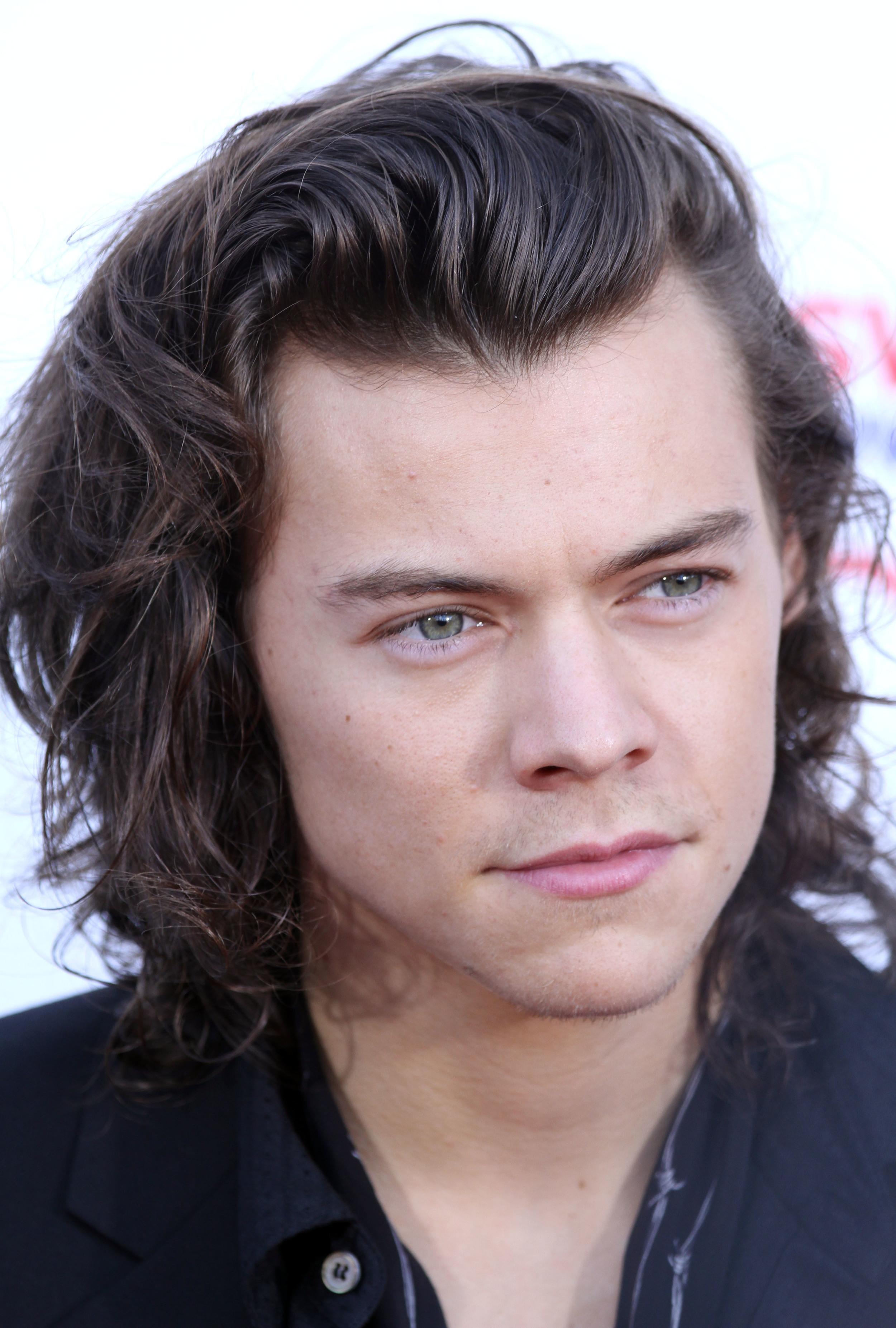 Harry_Styles_November_2014.jpg