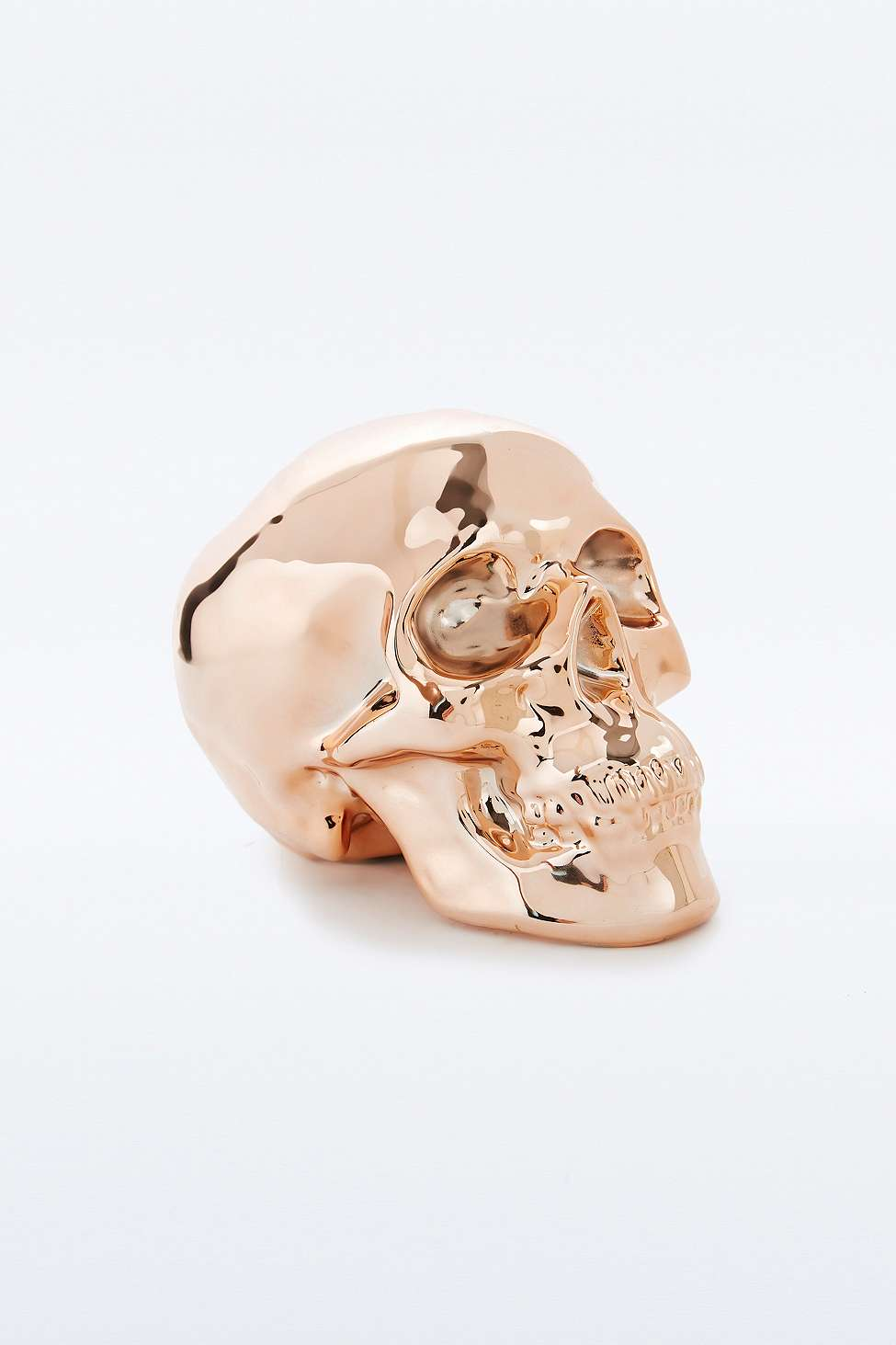 Copper Skull MoneyBox