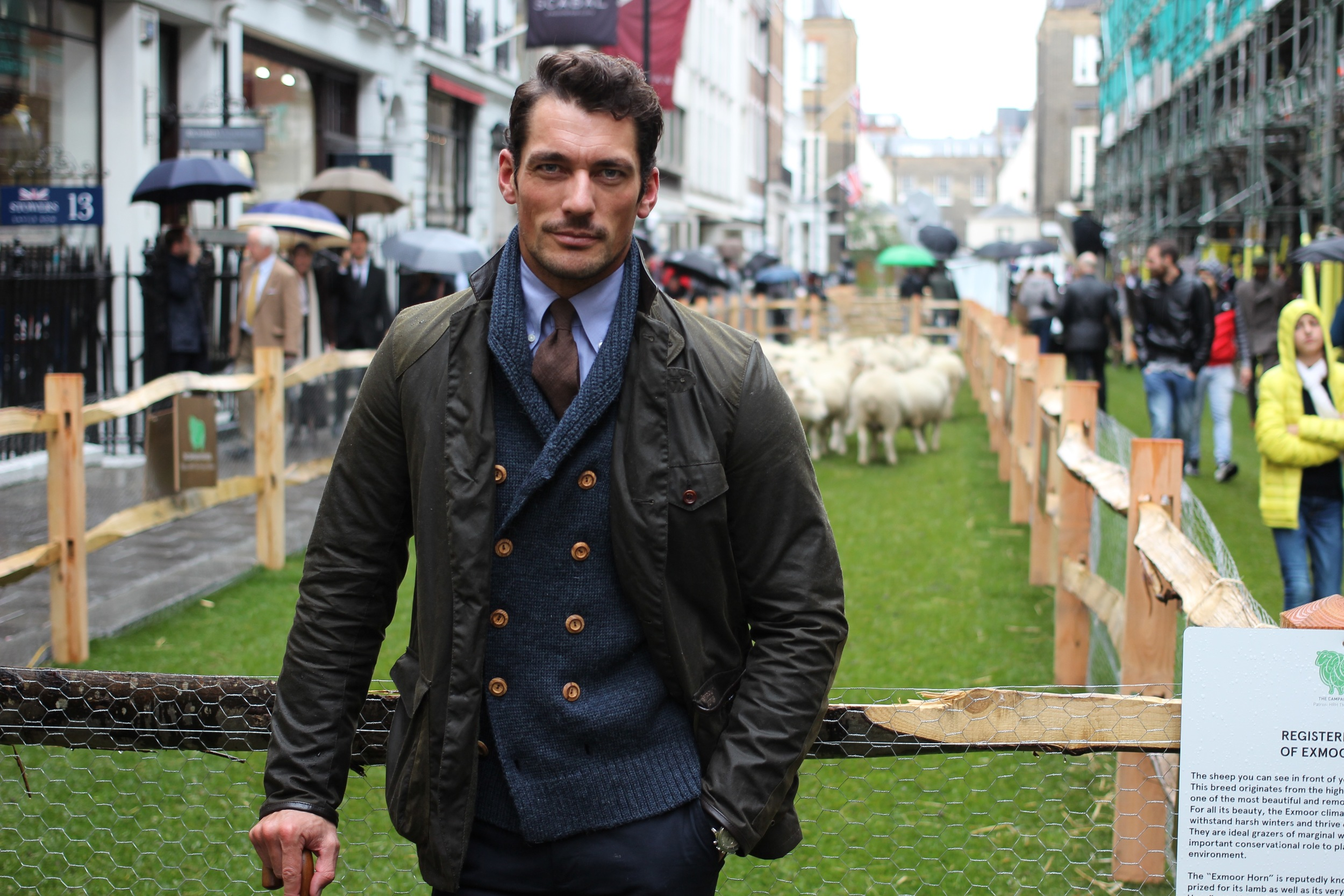 David Gandy Campaign for Wool.jpg