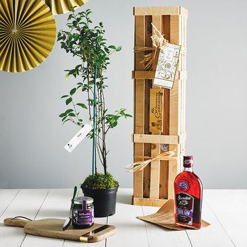 Sloe Gin Crate