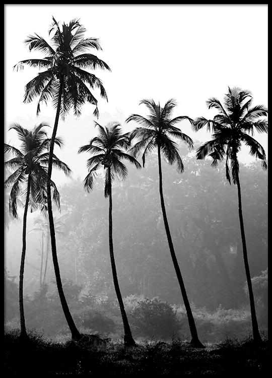 Desenio Palm Tree Print