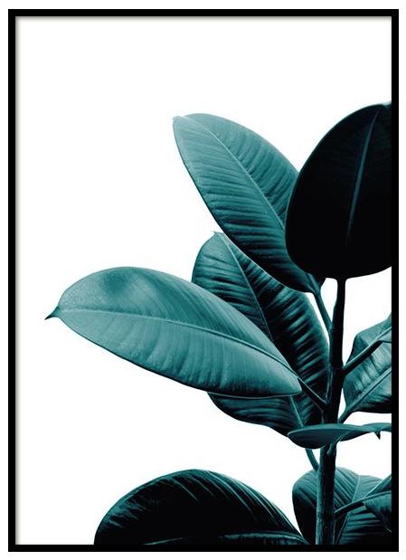 Desenio Green Plant Poster £Various