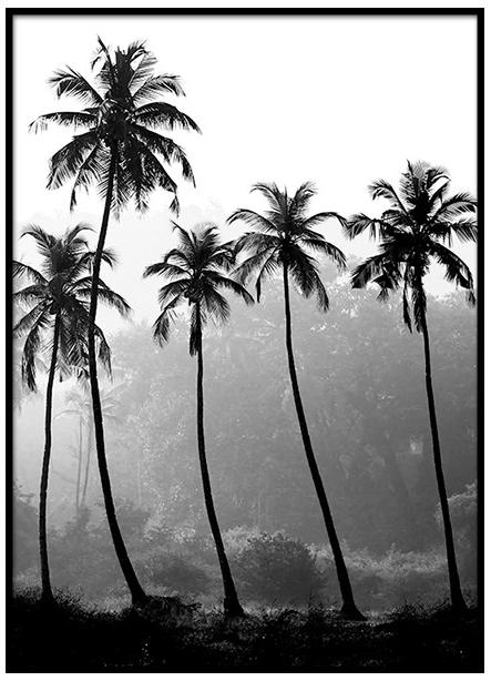 Desenio Palm Trees Poster £Various