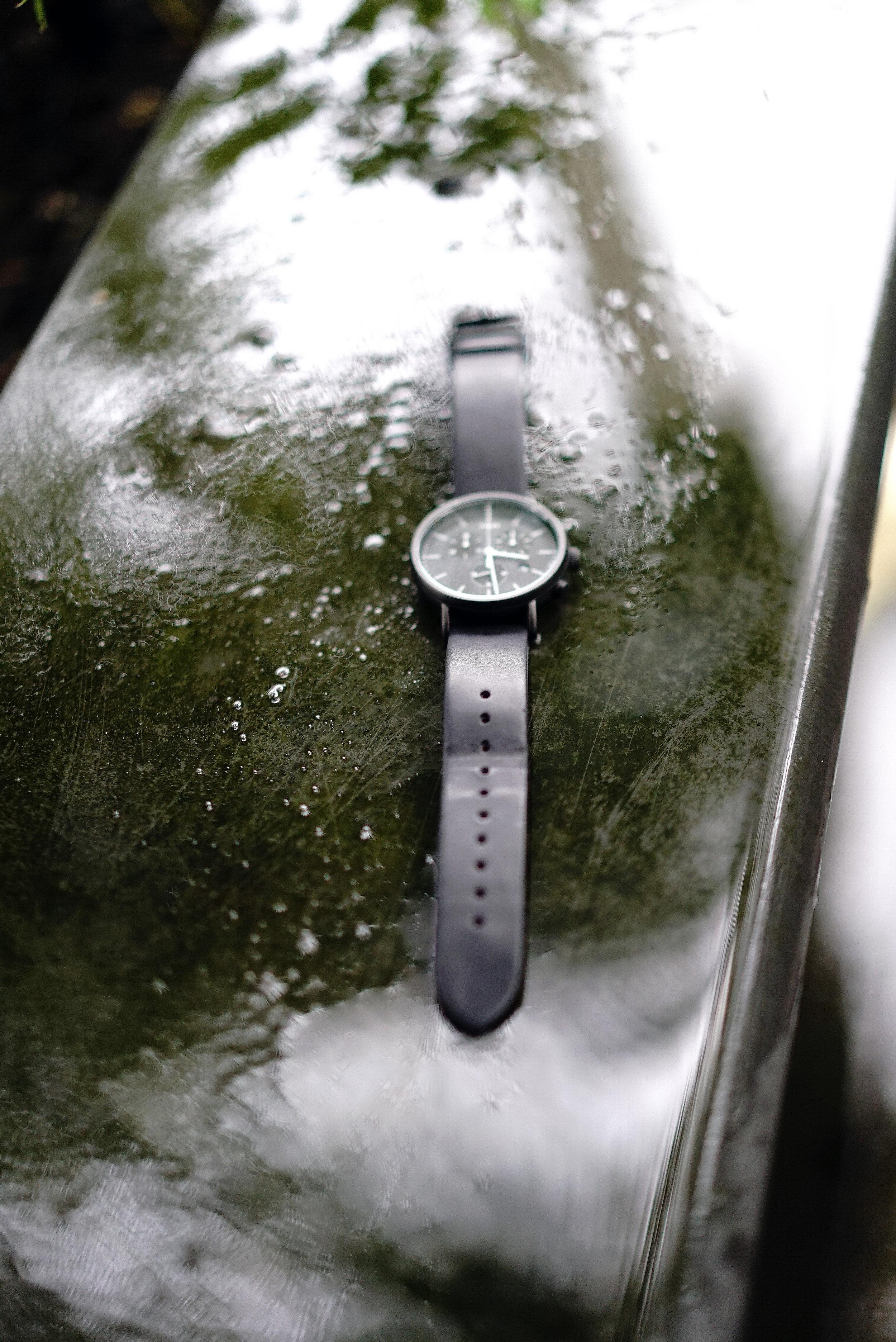 Timex Watch 2.jpg