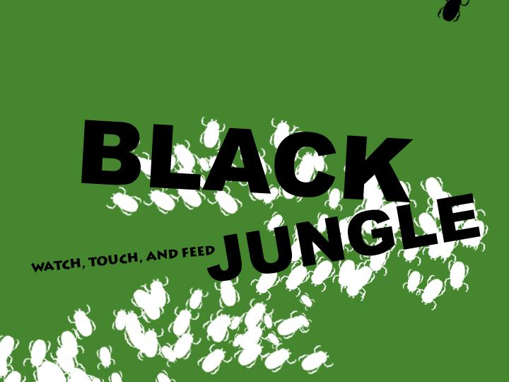 st_blackjungle_05.jpg