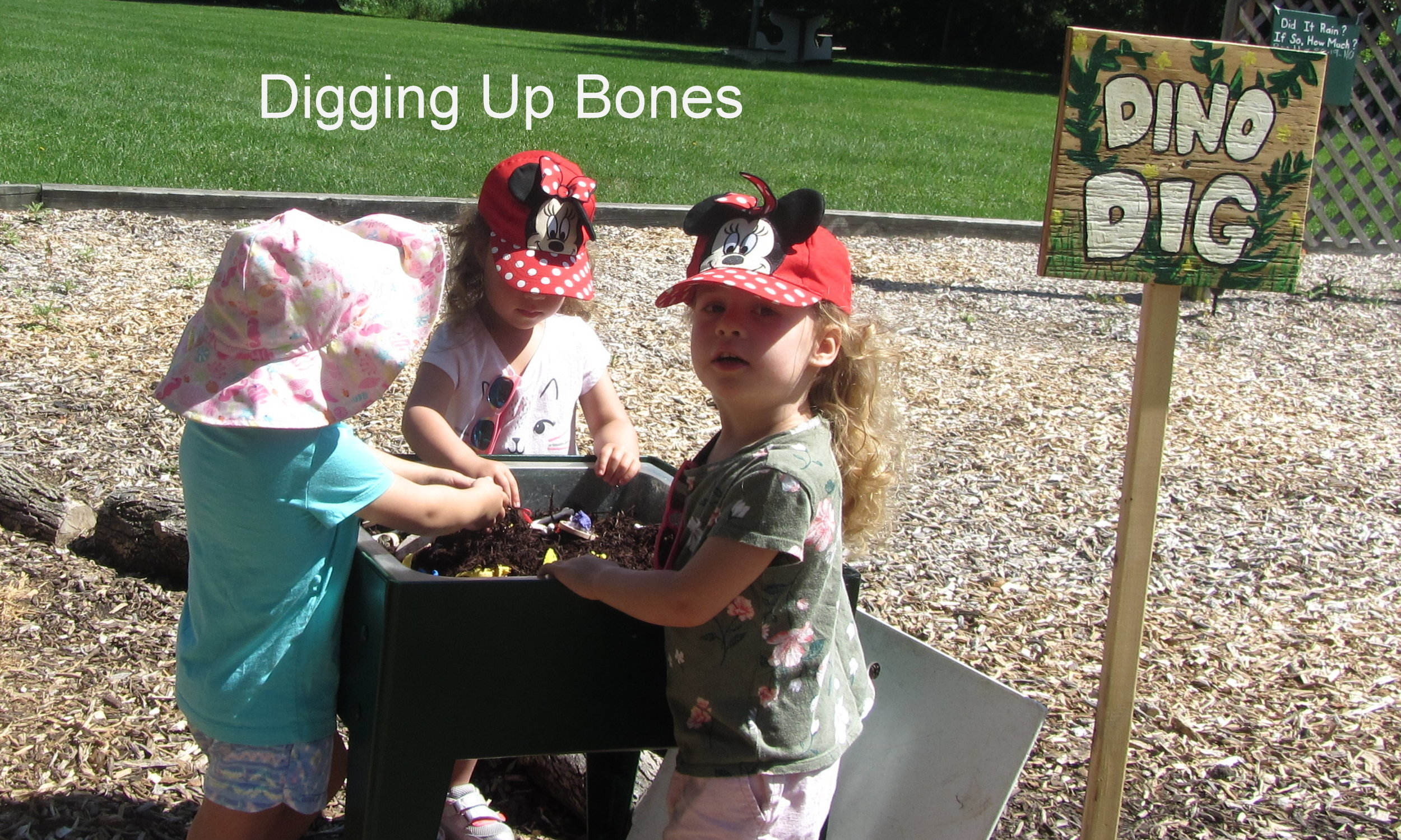 Dinoland - Digging Up Bones.JPG
