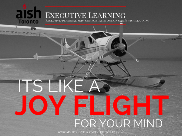 Executive Learning - Joy Flight (1).jpg