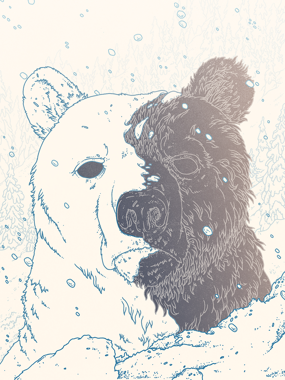 Bearmergernavycolorweb_o.jpg