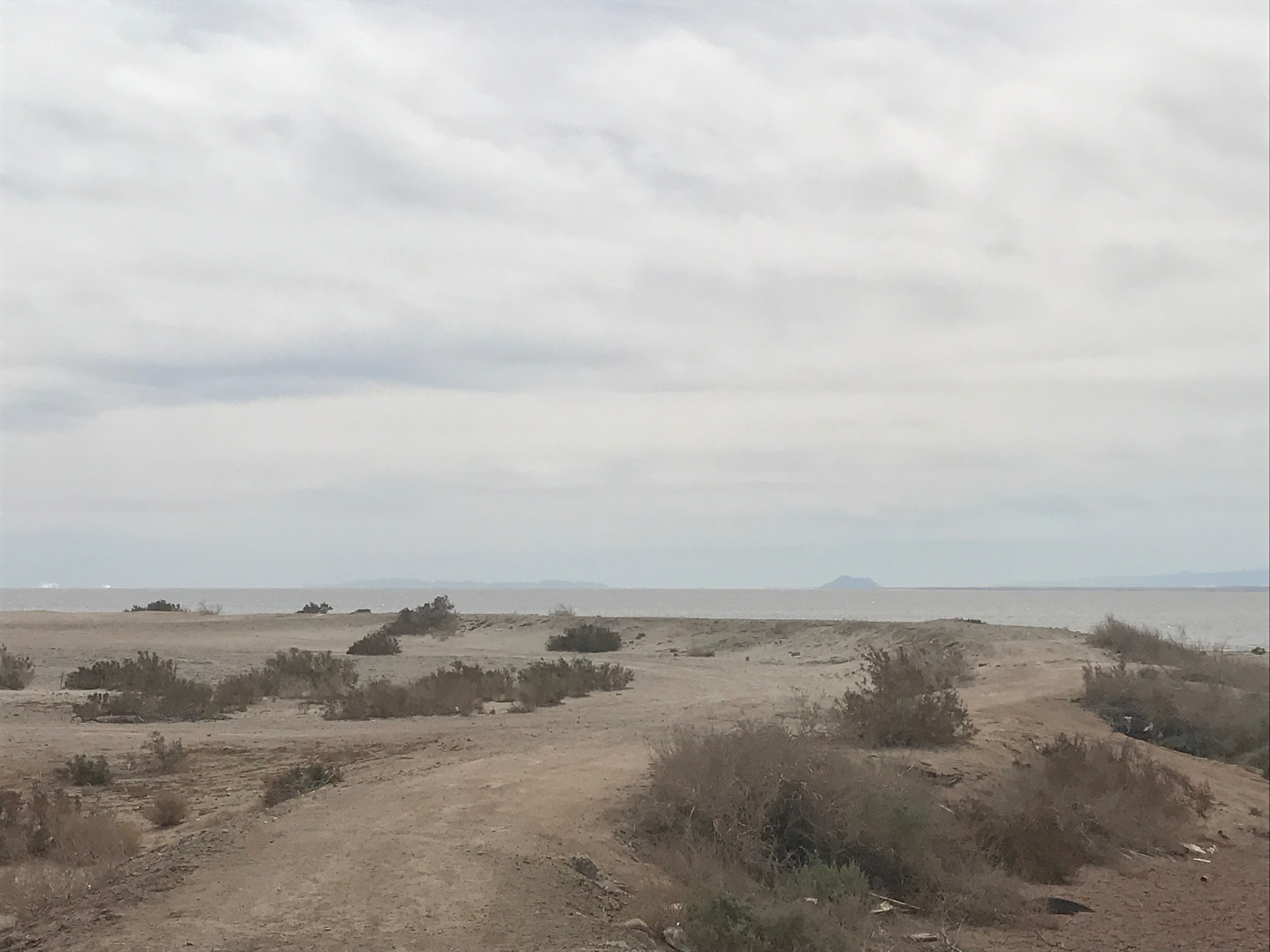 Salton Sea