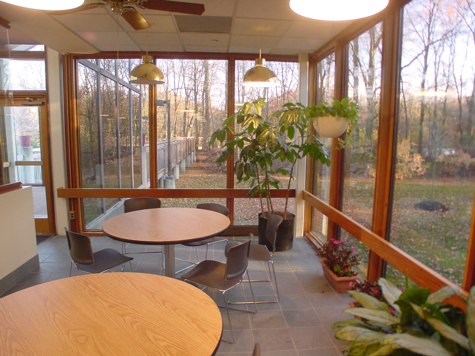 Since many will enjoy the cafeteria, a connection to the beautiful site through full height windows can still be enjoyed by many. Overhangs and the nearby woods itself provide natural shading and sound panels in the ceiling control noise.
