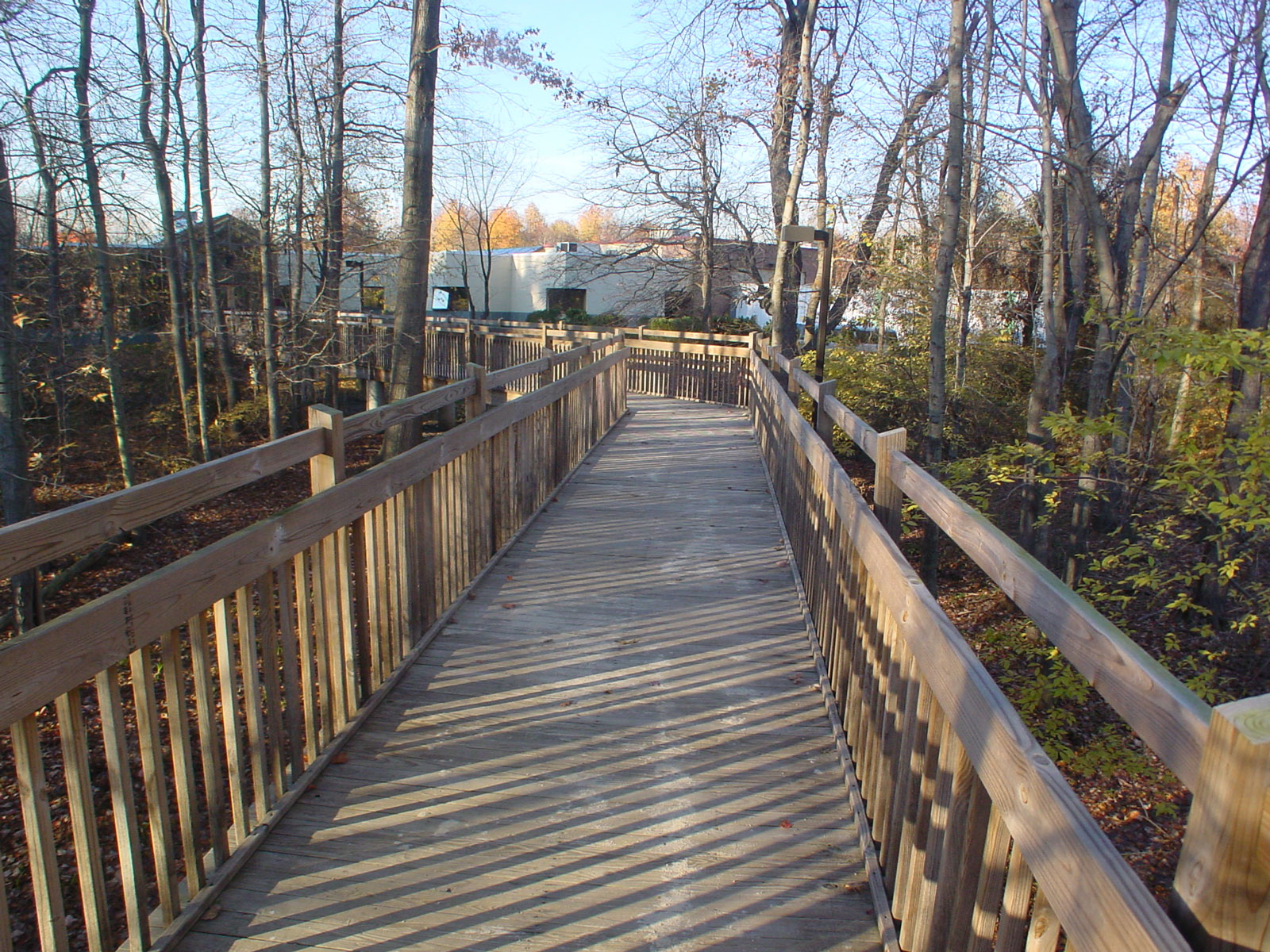 The wetlands were protected by separating the building from the parking lot with this boardwalk through the woods. Both the sighted and unsighted enjoy a walk in the woods and the wide berth allows guide dogs to pass.