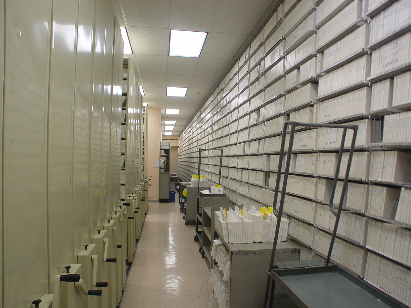 This 83,000-volume Master Tape Library is the largest educational resource of its kind in the world and Dennis designed three continuous movable shelving systems to handle the product. These 12' tall carousels are 80' long and rotate by computer signal to bring the selected audio master tape to an operator for duplicating.