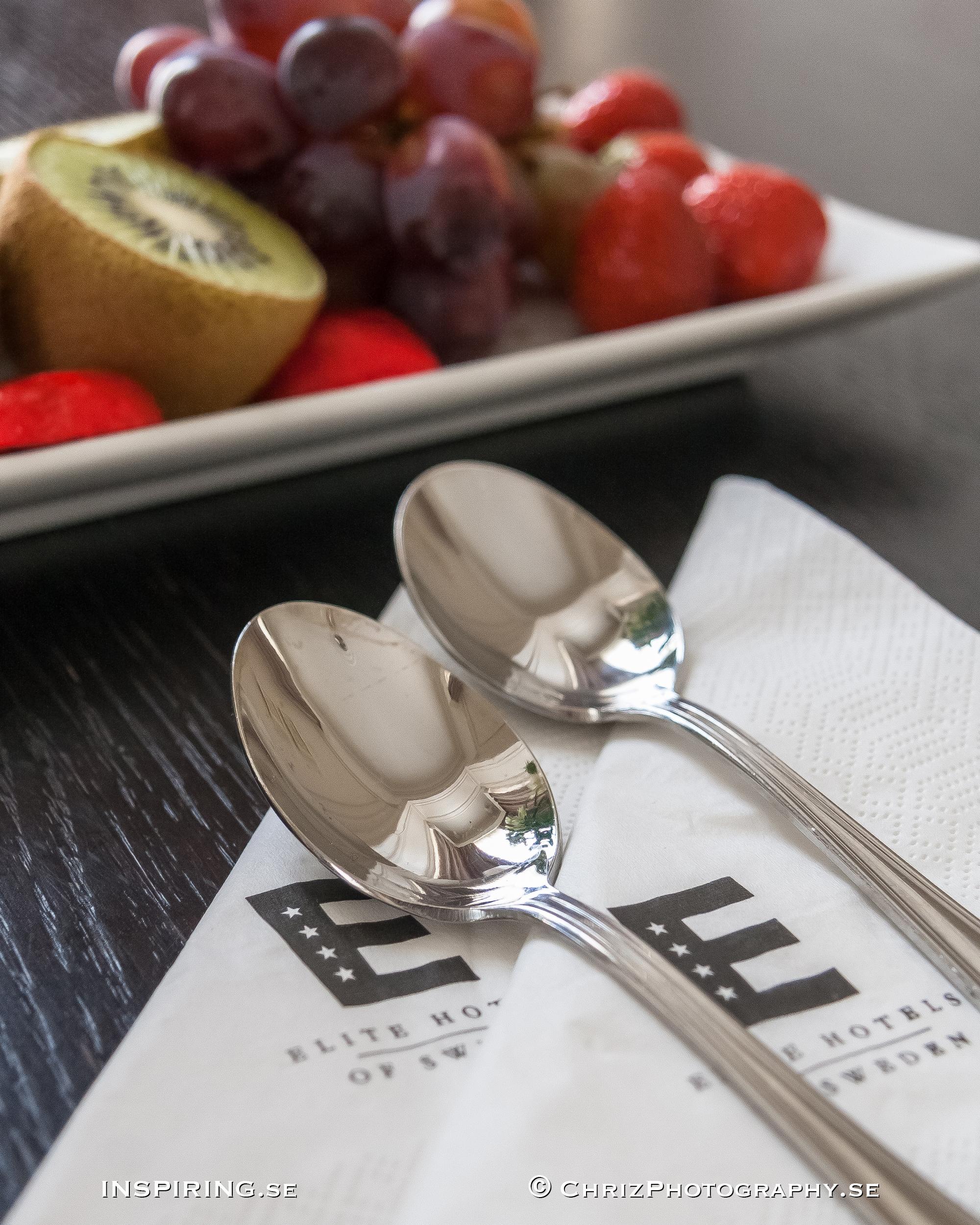 Elite_Hotel_Knaust_Inspiring.se_copyright_ChrizPhotography.se_19.jpg