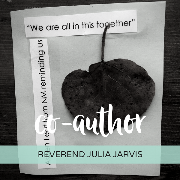 co-author- rev julia.png