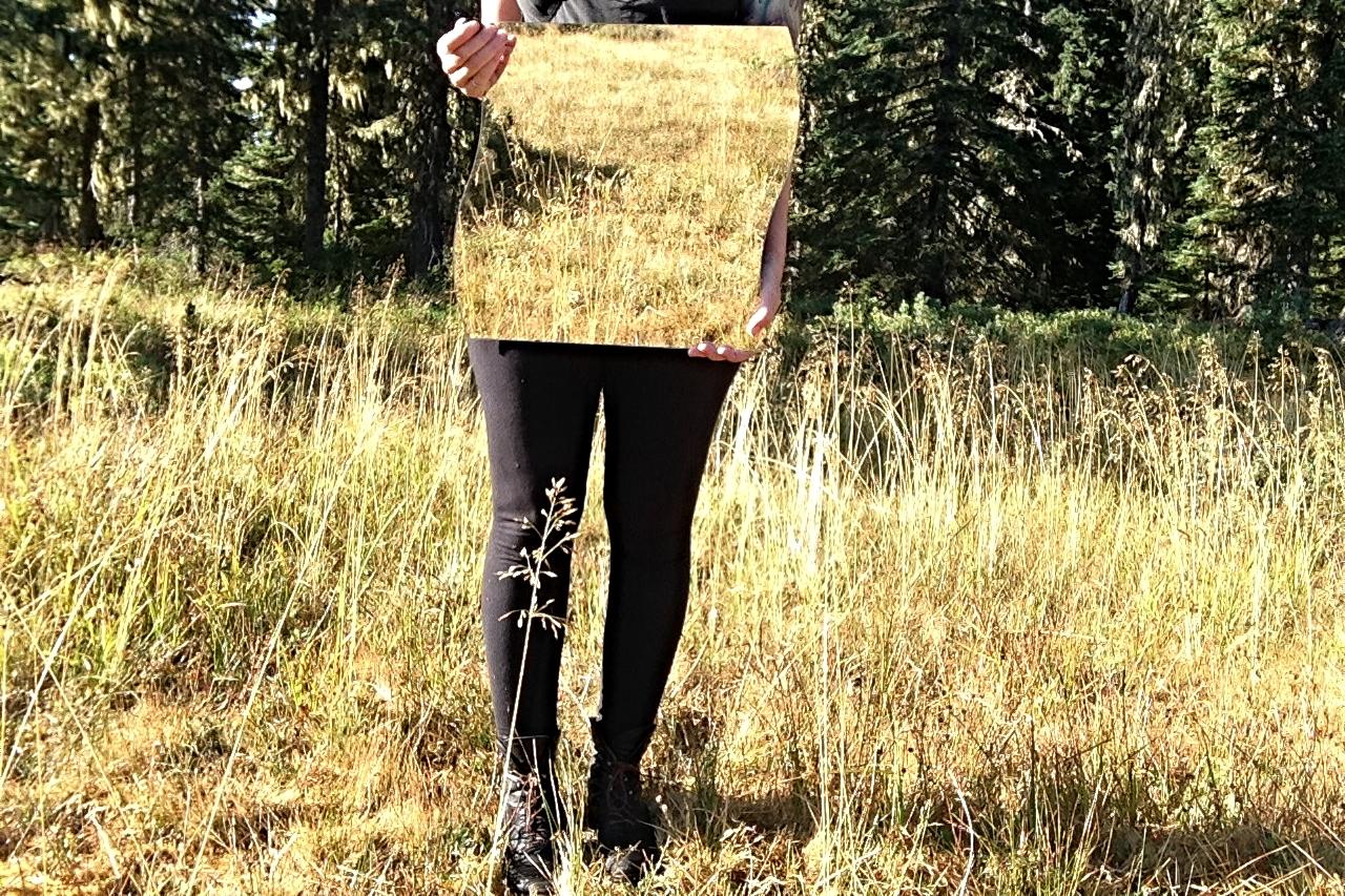Black Wold Meadow
