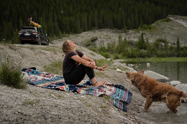 Skoki's version of golden air-conditioning… #SubaruRoadTrip @SubaruCanada 📸:@LyndsayGreenwood . . . . #SkokiAdventures #LakeVibes #Canada #GoldenRetriever #MountainDogs #SubaruForester #MountainGirls #Mountainstories #Canmore #Spraylakes #CanadaWater #Adventurevehicle #DogsofCanada #KananaskisCountry #BowValley #TourCanada #Summer #CanadianRockies #RadGirlsLife