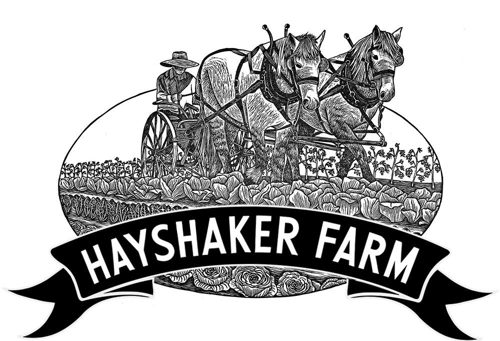 Hayshaker mockup REVISED.jpg