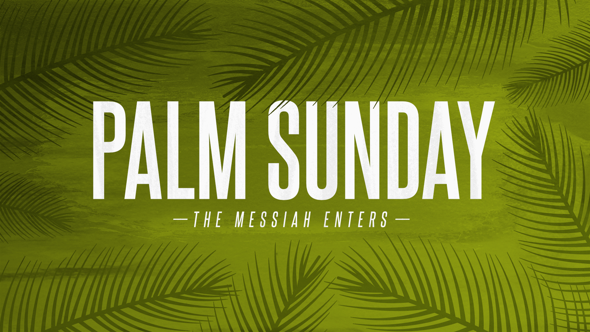 Palm Sunday - The Messiah Enters • April 9, 2017