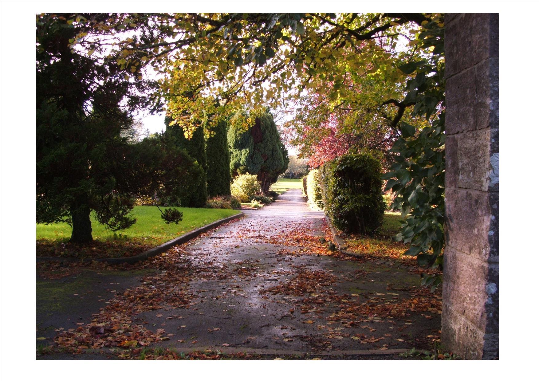 Garden walk from gate autumn 2013 jpeg.jpg