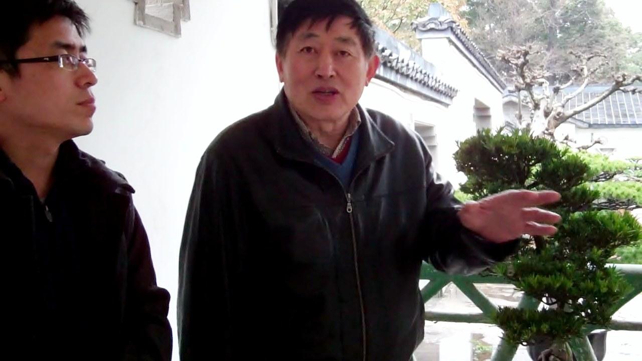 Mr. HU promotes penjing culture.