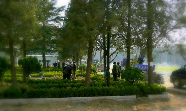 Park installation.1