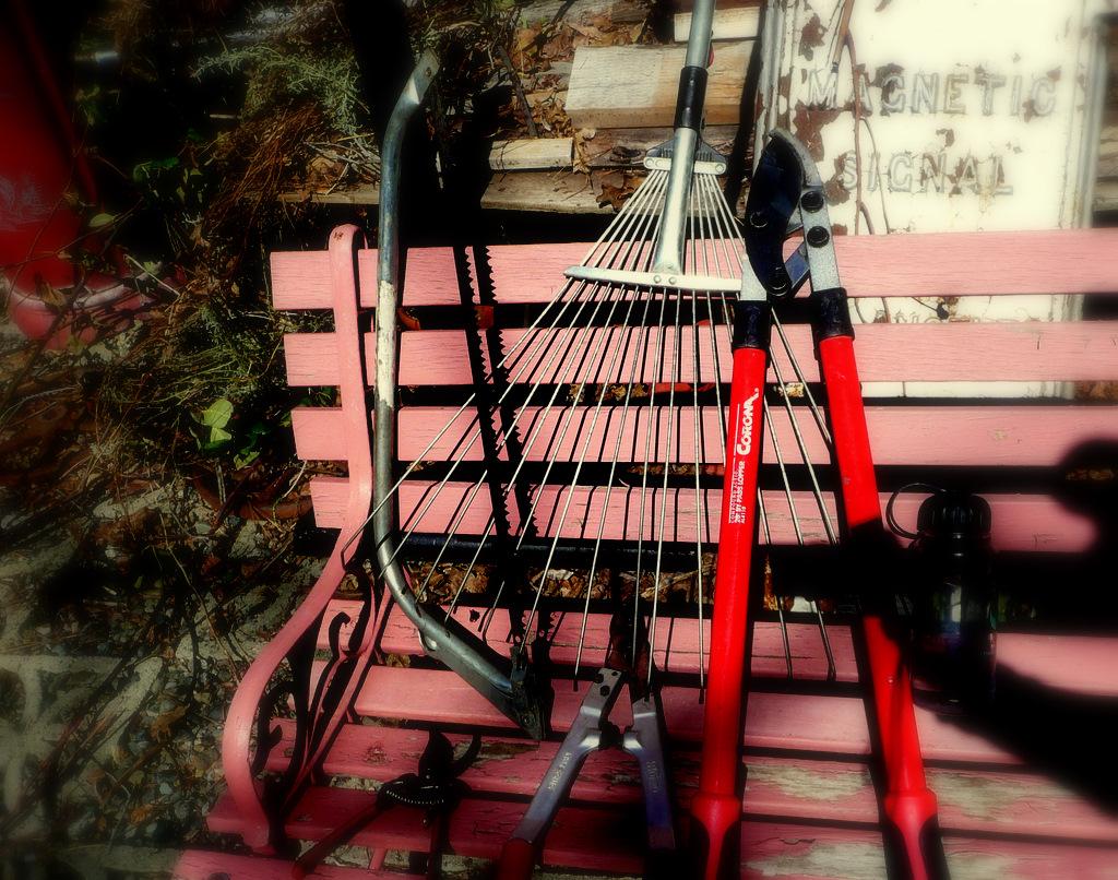 Pink bench Tao Hongse