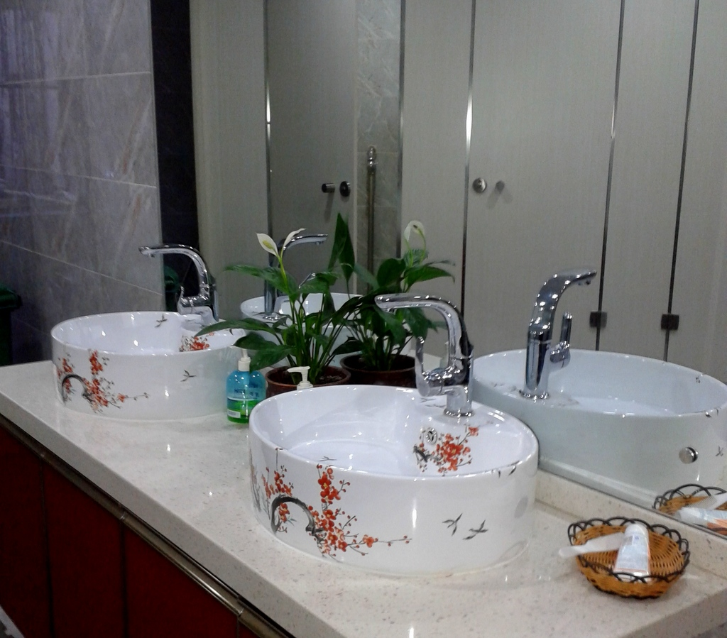 Anmo xishou jian with beautiful sinks decorated with blooming plum branches