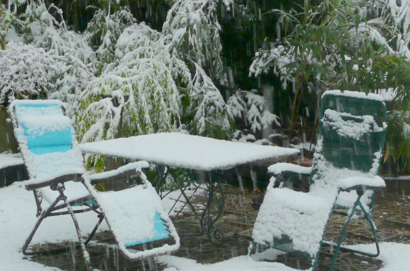 This is our snowy backyard from the one storm all year on April 7.