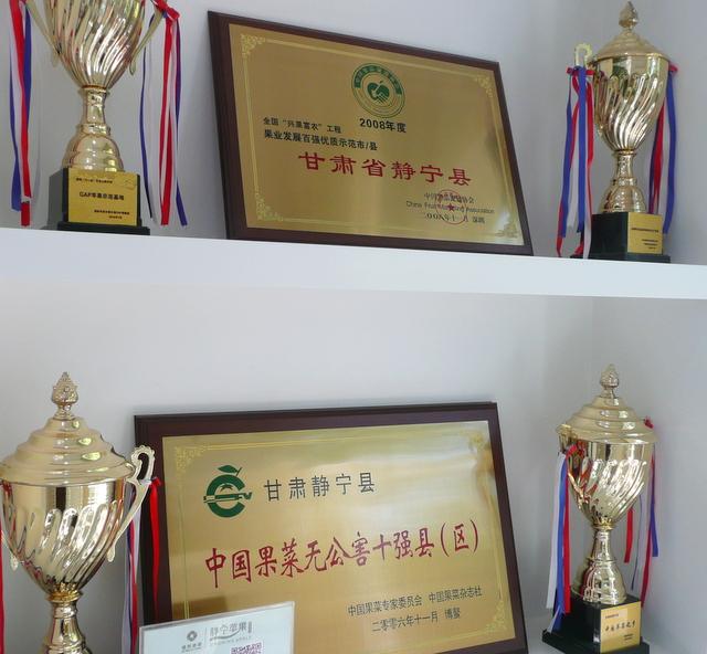 Award winning apples