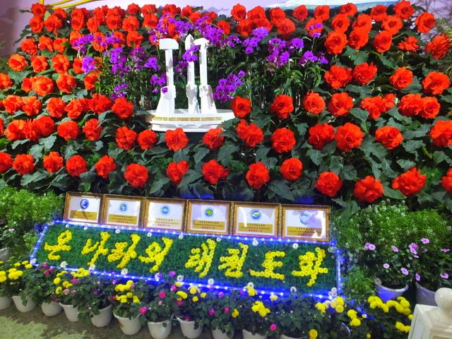 Taekwando exhibit at Kimilsungia&Kimjongilia Exhibition Hall.