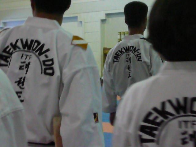 Inspection of Taekwondo training of the Korean trainers and world famous Taekwondo Demonstration