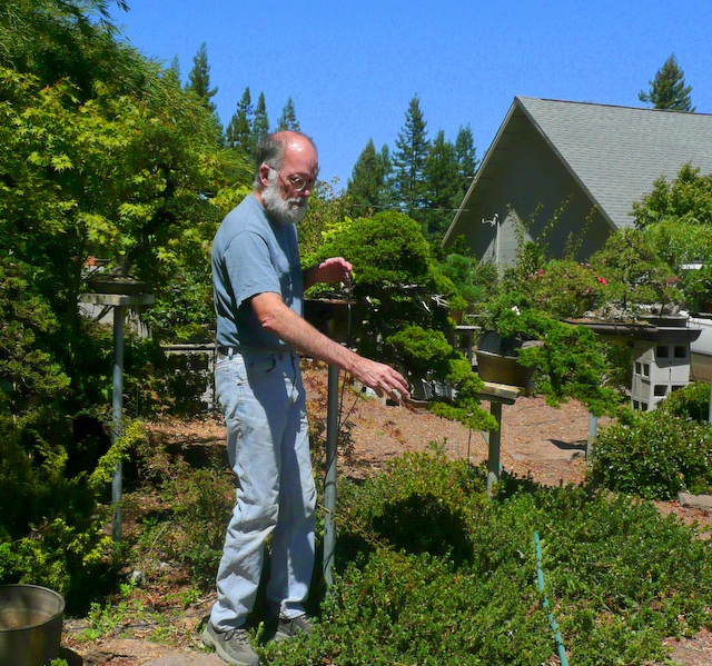 Jim Gremel at Deer Meadow Bonsai