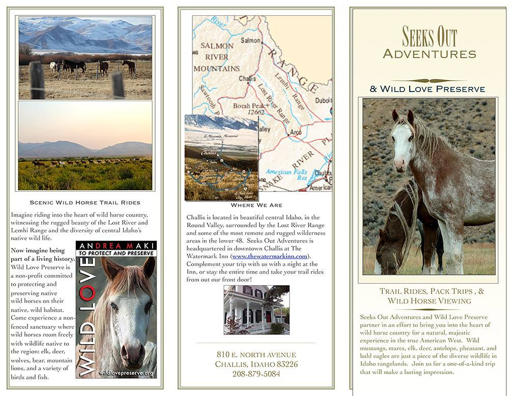 Partners Wild Love Preserve andSeeks Out AdventuresOffer YouCustom Wild Horse Adventures Trips in Central Idaho. Your Wild Adventures Start Here:    SEEKS OUT ADVENTURES