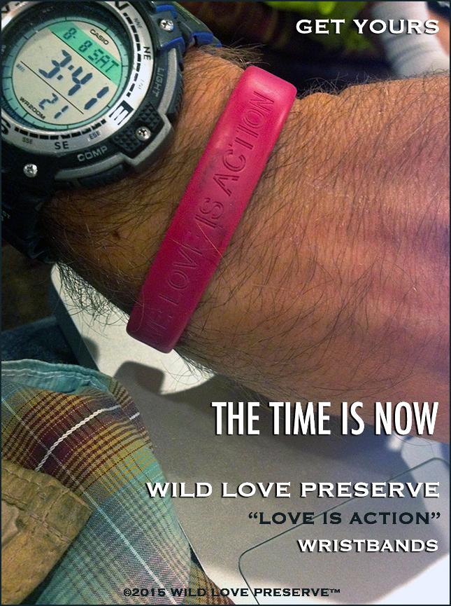 AB-WLP-Wristbands-2.jpg