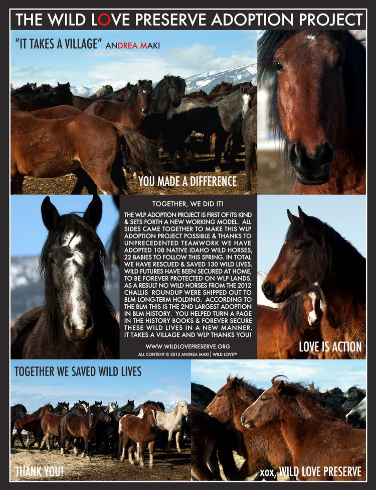 The Wild Love Preserve Adoption Project 2012-13. ©2013 Andrea Maki