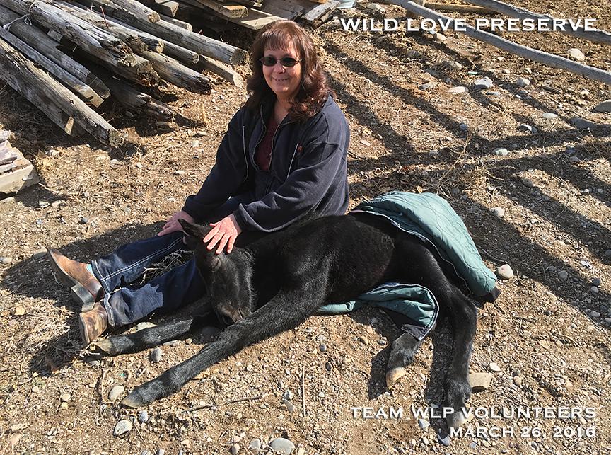 WLP Volunteer Jan Adams with a precious, sleeping beauty.