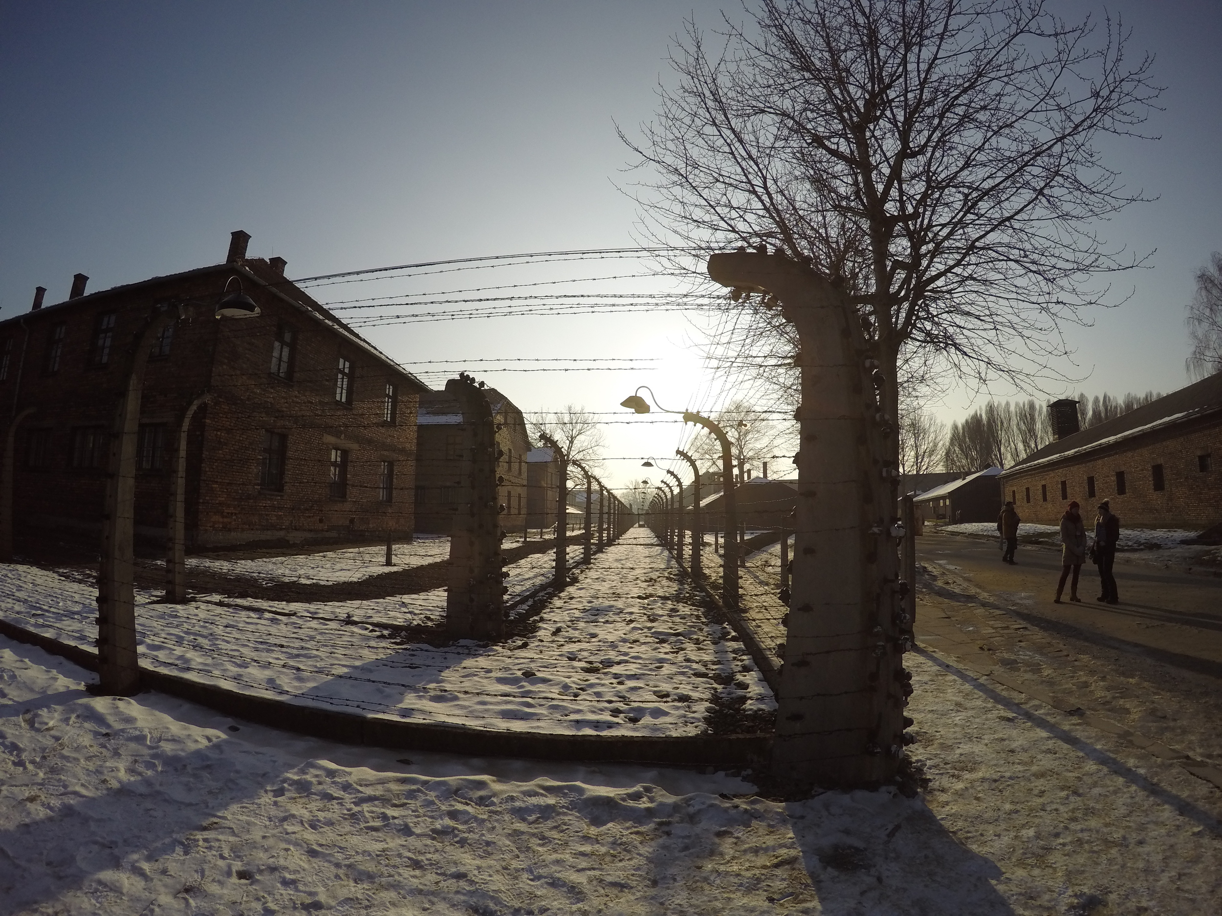 Barbed wire fencing at Auschwitz