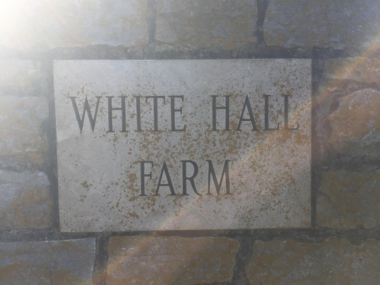 white-hall-farm-sign.JPG