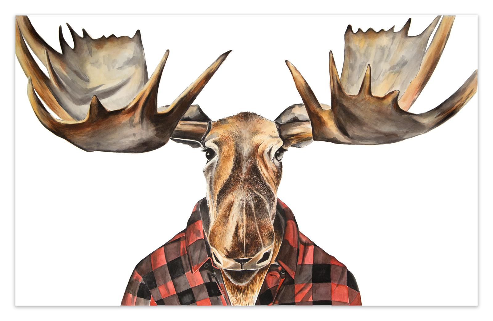 Moose In Buffalo Check