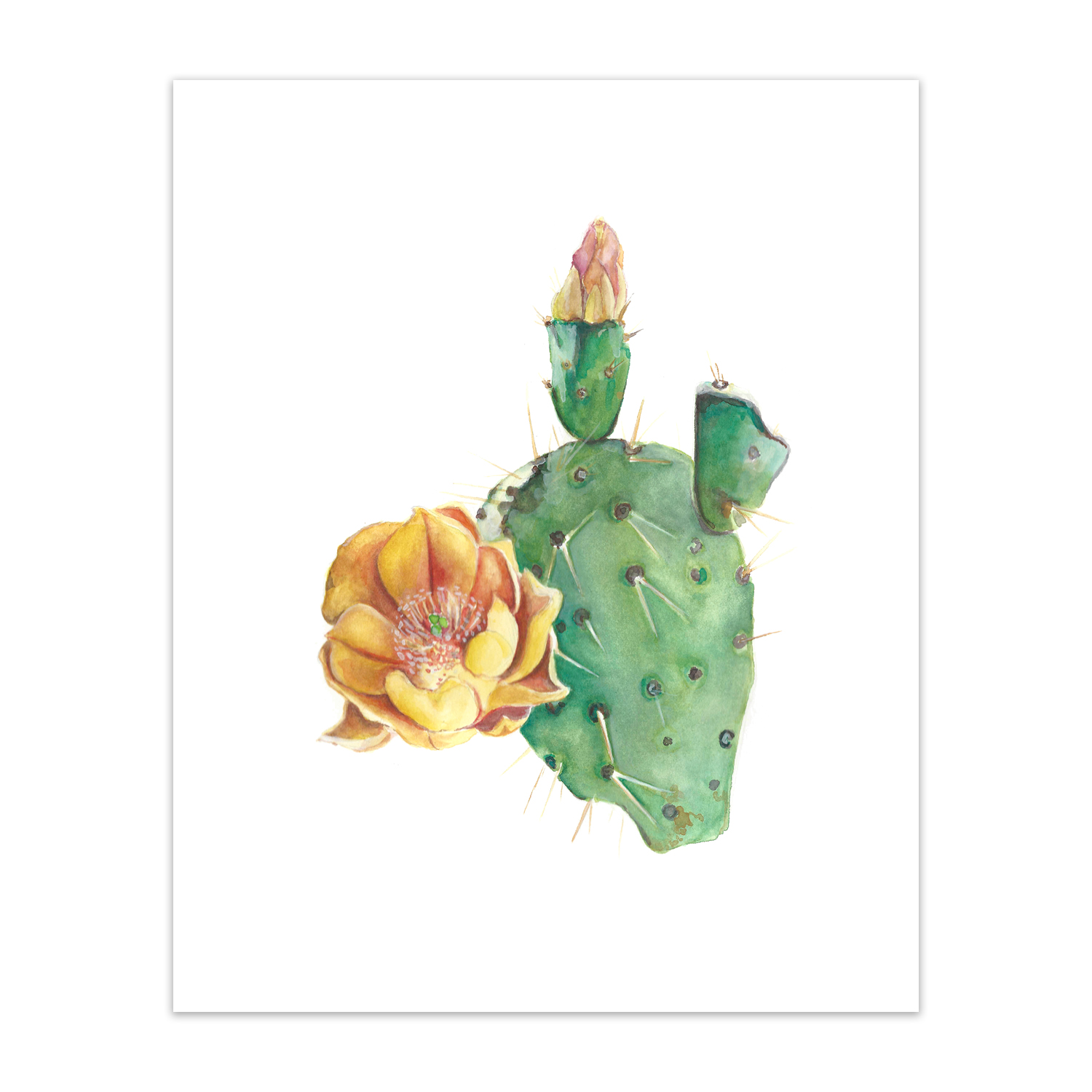 "Prickly Pear <br> <span style= ""font-size: 0.75em;""> 🔴  SOLD </span>"