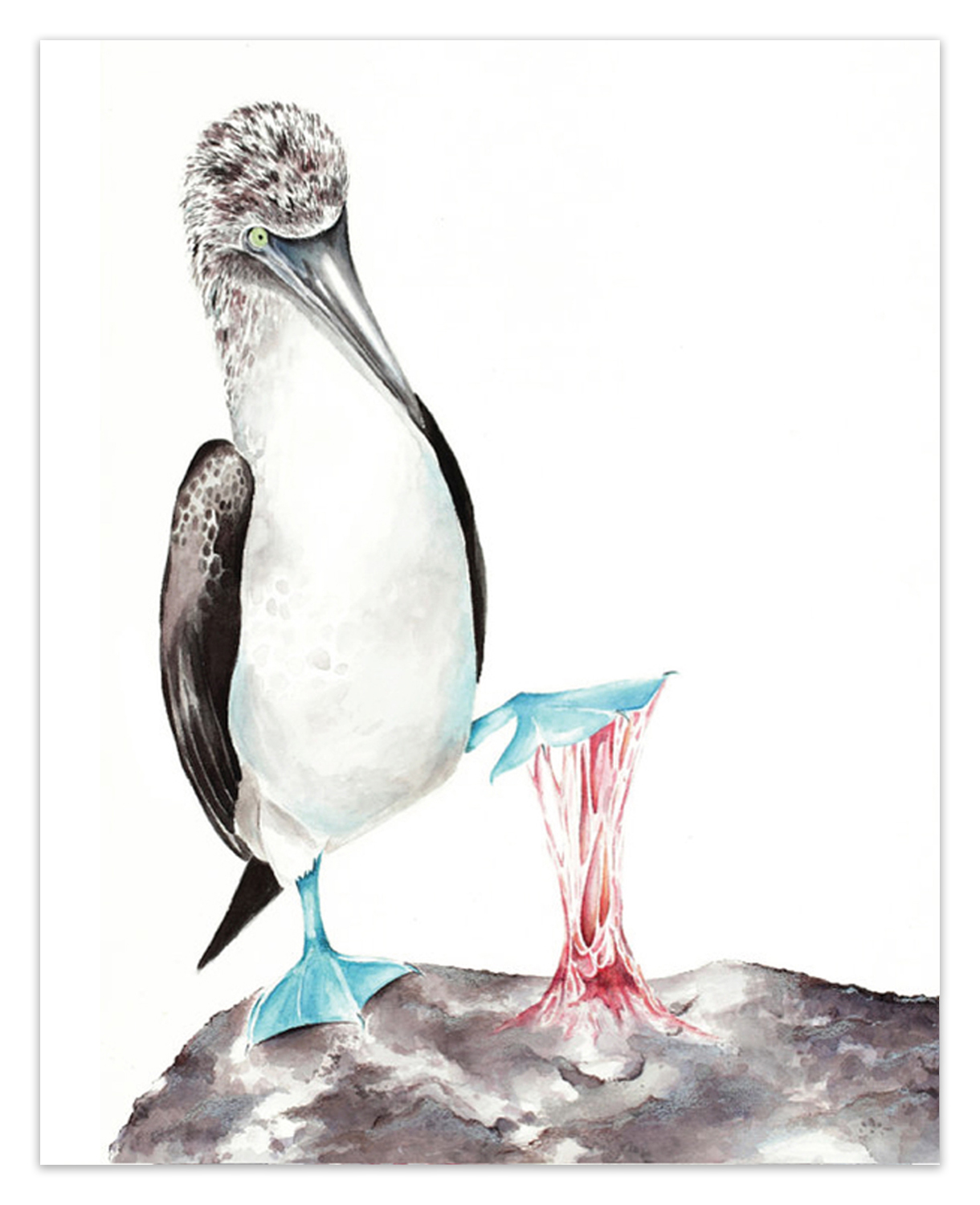 """Sticky Situations: Blue-Footed Booby I.  <br> <span style= """"font-size: 0.75em;""""> 🔴  SOLD </span>"""