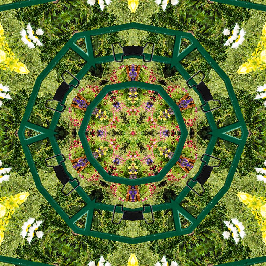 Flowers-w.jpg