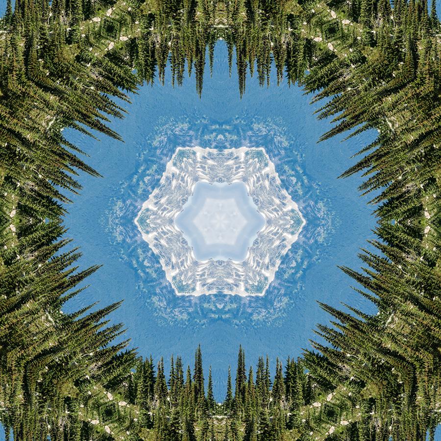 TreesMountain-w.jpg