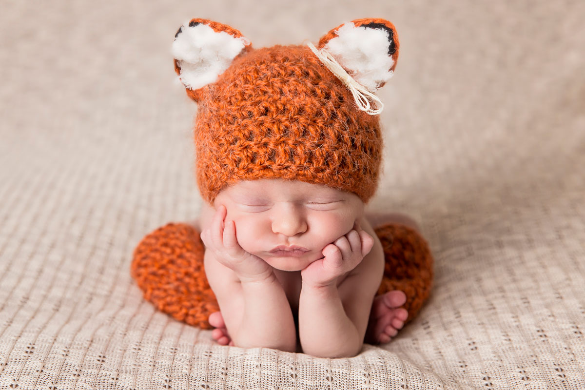 Where does the fox sleep?