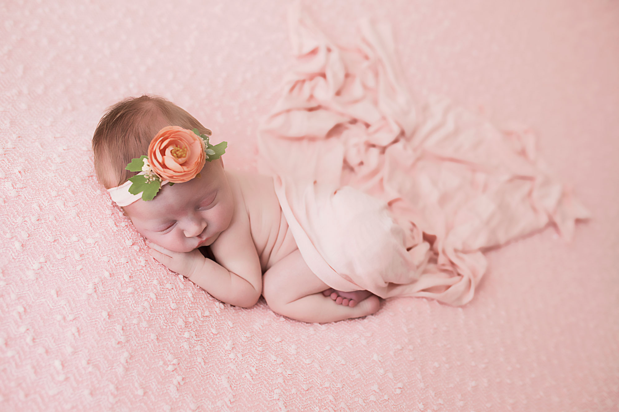 knoxville-pink-newborn-studio.jpg