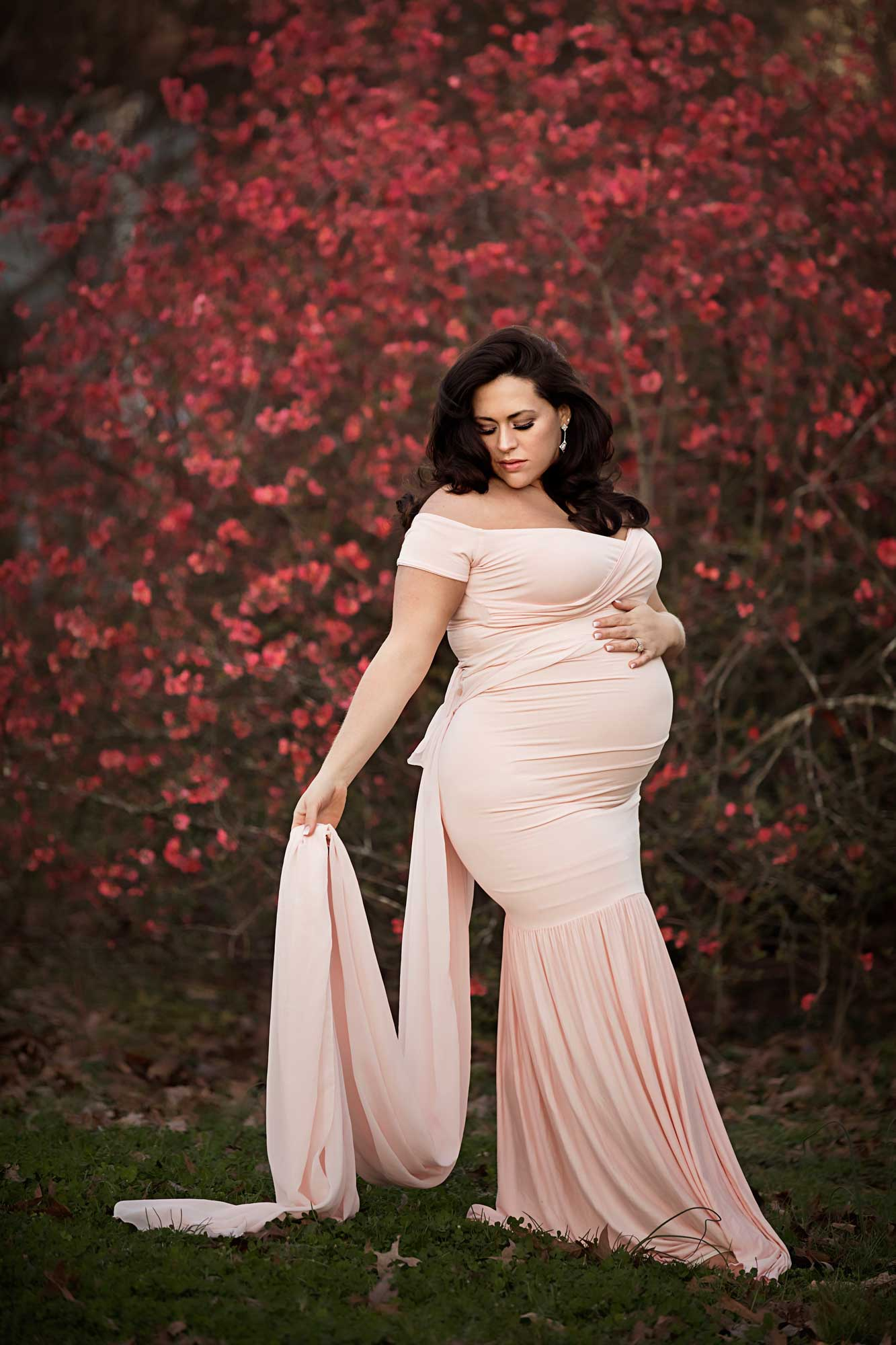 Knoxville-maternity-photographer-pregnancy-gowns.jpg