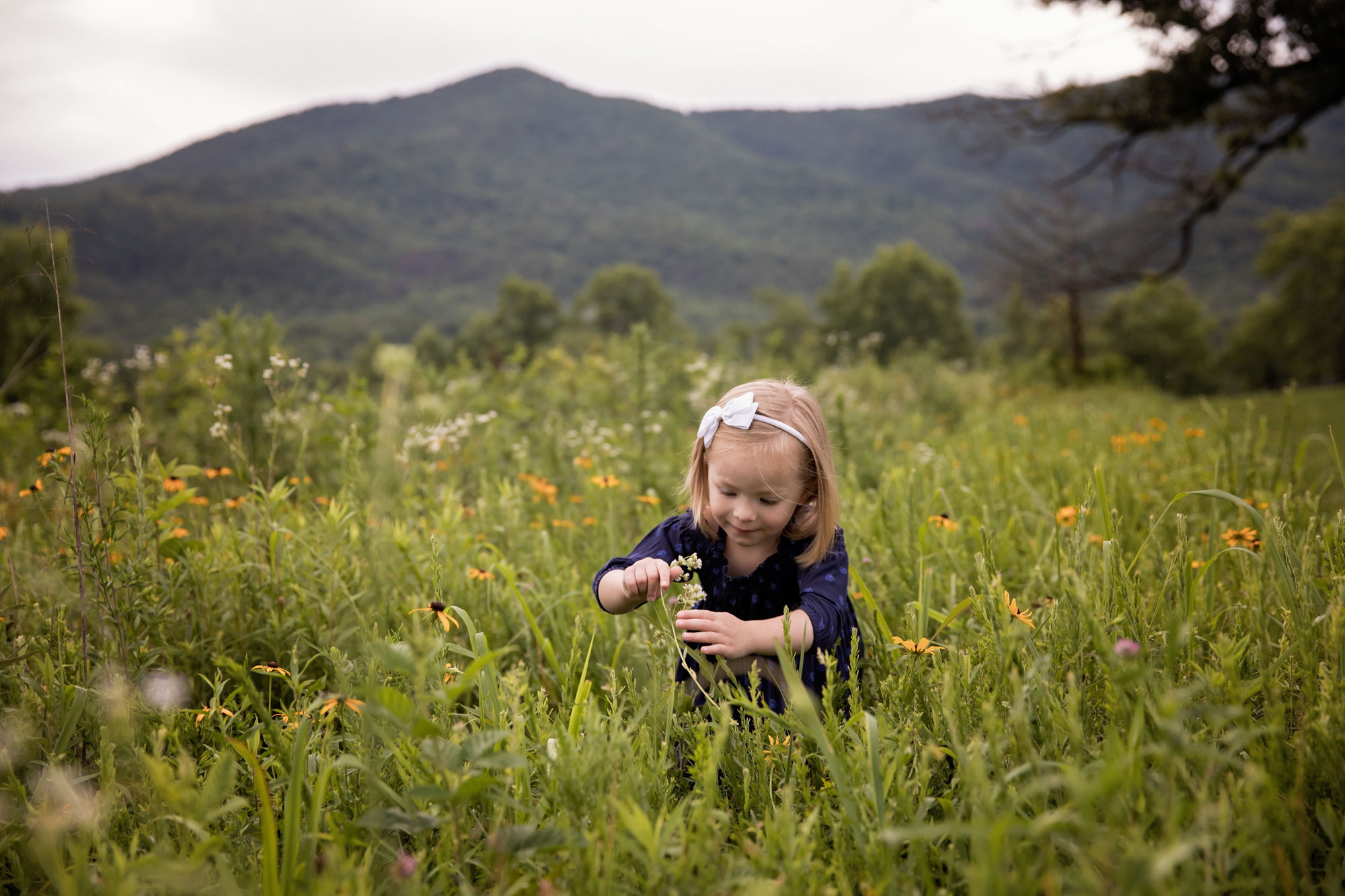 cades-cove-family-photographer-smoky-mountains.jpg