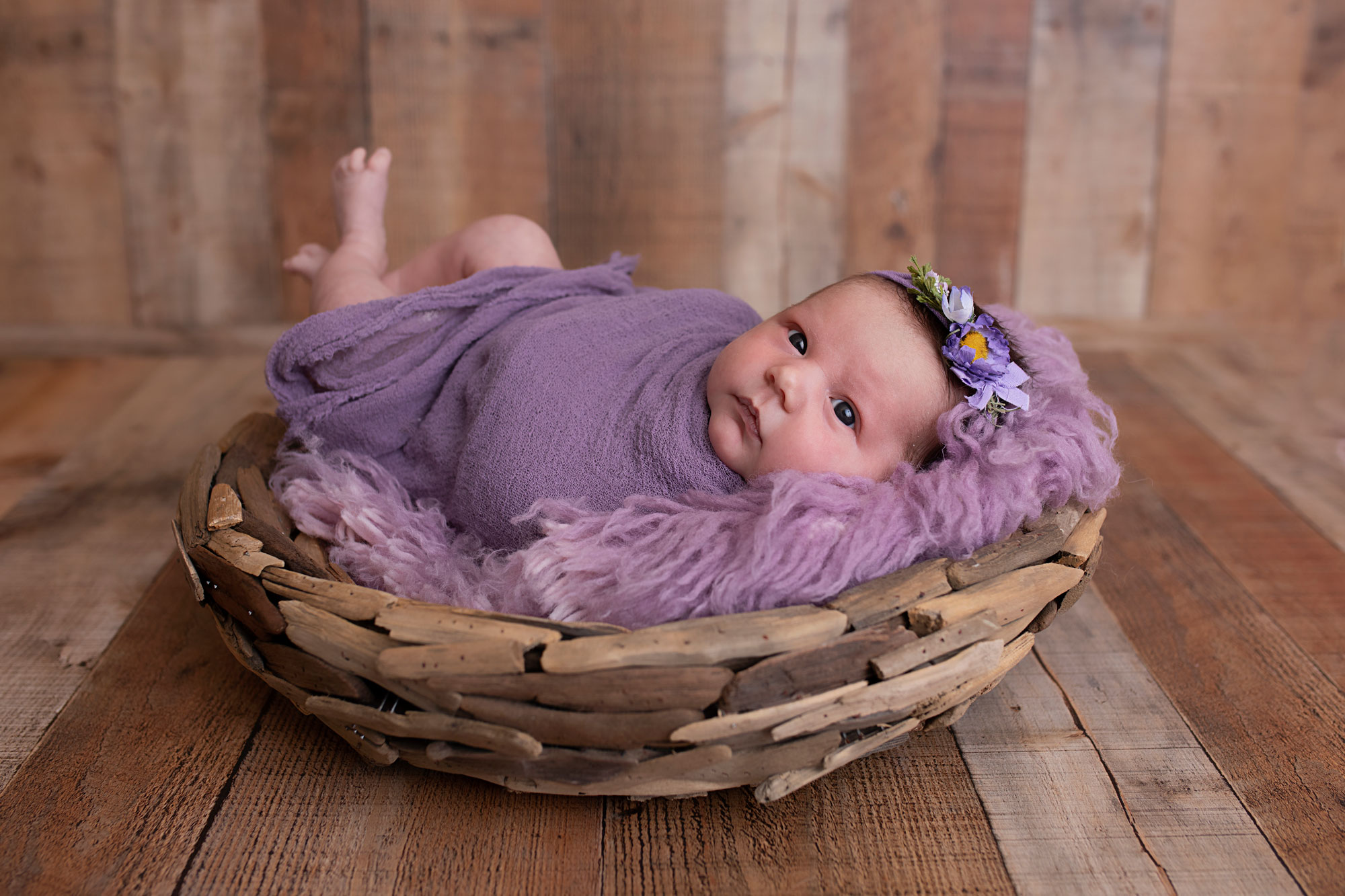knoxville-newborn-photographer-purple-set.jpg