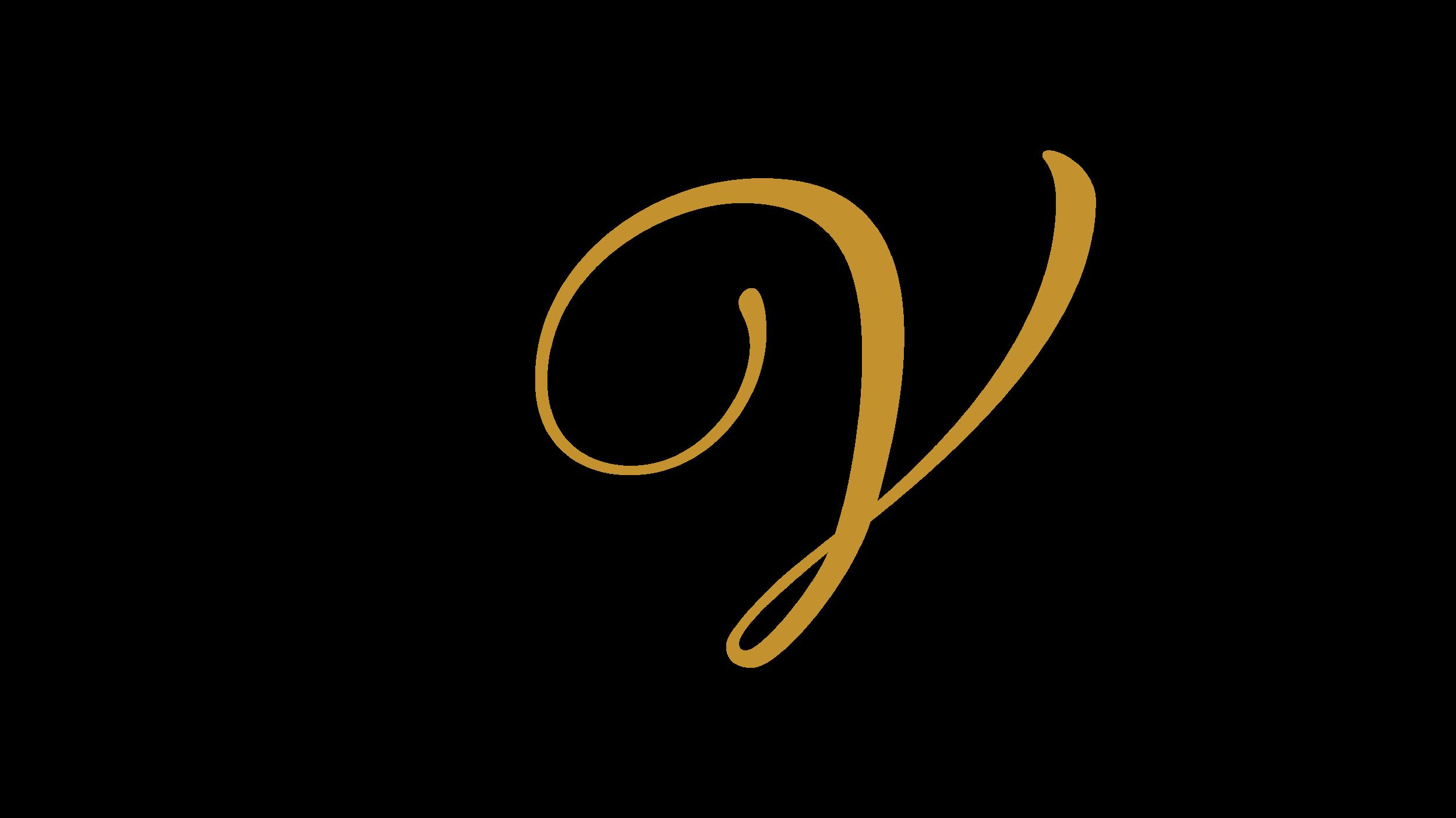 VWI Main Logo-lrg-01.png